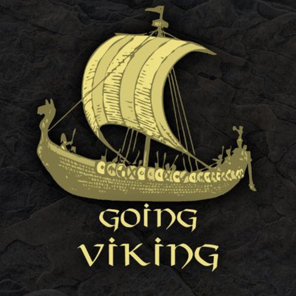 Going Viking Review!